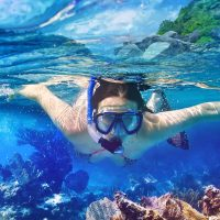 Snorkel and Swim Over Coral